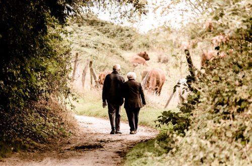 vdovském důchodu